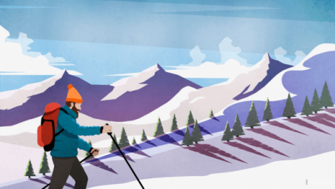 A picture of a man with an orange hat cross country skiing in the mountains with trees in the background.