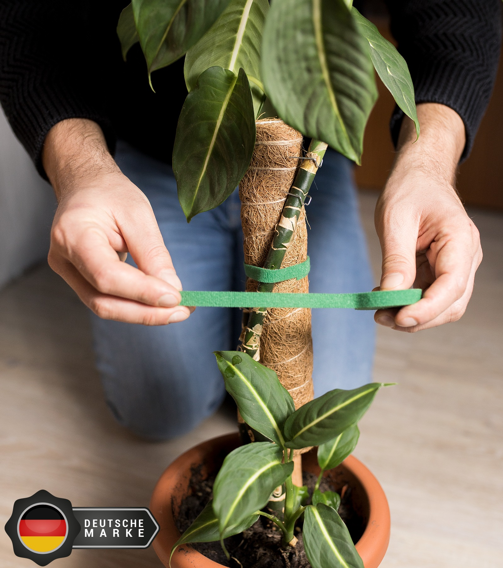 The winning image from a PickFu poll, showing plant tape being secured to a plant