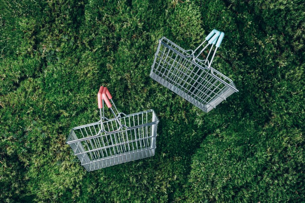 Sustainable lifestyle. Top view of supermarket shopping basket on green grass, moss background